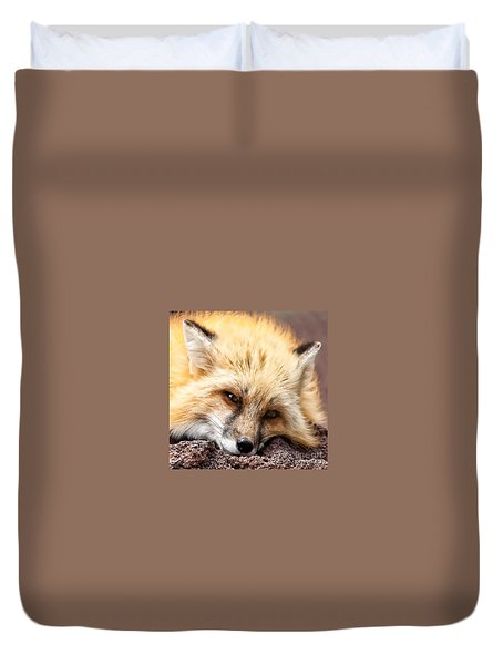 Duvet Cover featuring the photograph Fox Head Study In Square Format by Laurinda Bowling