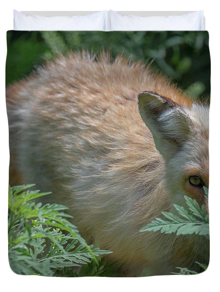 Fox In The Ferns Duvet Cover