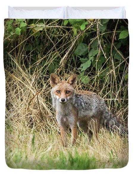 Fox In The Woods Duvet Cover
