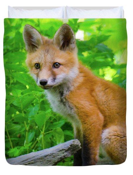 Fox Kit - 1 Duvet Cover