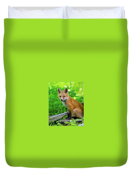 Fox Kit - 1 Duvet Cover