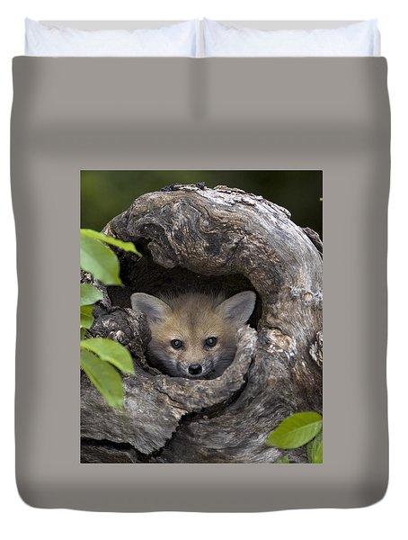 Fox Kit In Log Duvet Cover