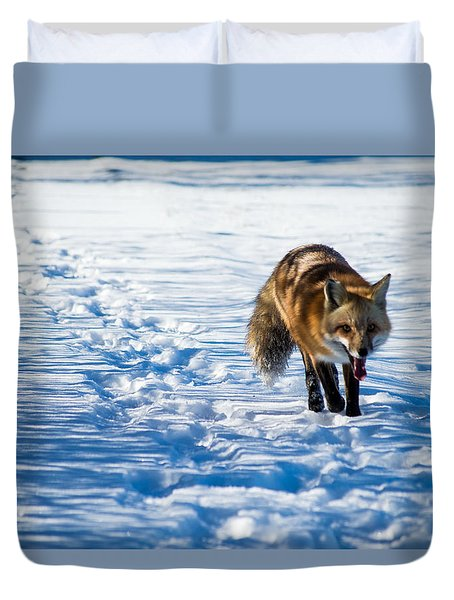 Fox Path Duvet Cover