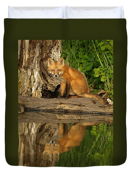 Fox Reflection Duvet Cover