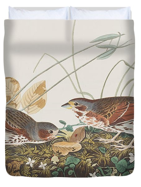 Fox Sparrow Duvet Cover by John James Audubon