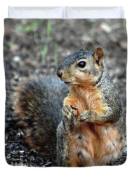 Fox Squirrel Breakfast Duvet Cover