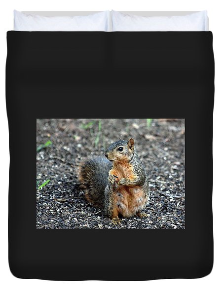 Fox Squirrel Breakfast Duvet Cover