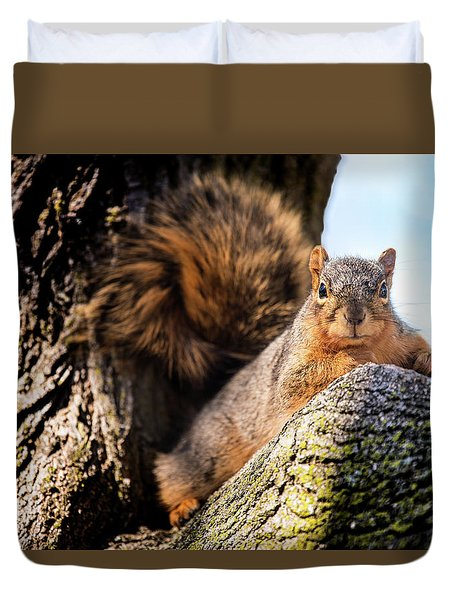 Duvet Cover featuring the photograph Fox Squirrel Watching Me by Onyonet  Photo Studios