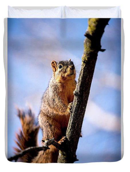 Duvet Cover featuring the photograph Fox Squirrel's Last Look by Onyonet  Photo Studios