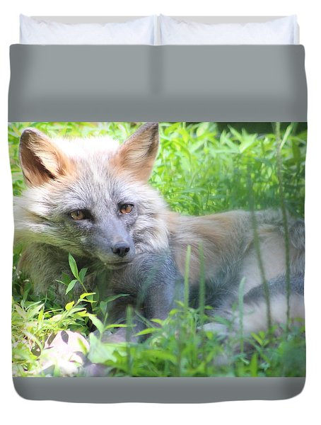 Duvet Cover featuring the photograph Foxy by Debra     Vatalaro