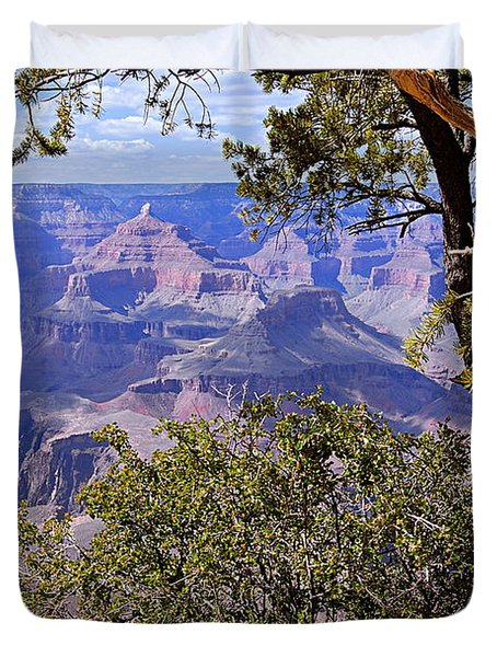 Framed View - Grand Canyon Duvet Cover by Larry Ricker