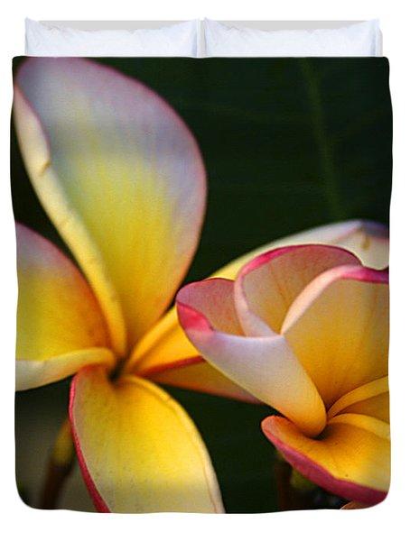 Frangipani Flowers Duvet Cover