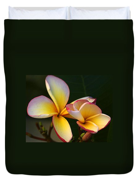 Frangipani Flowers Duvet Cover by Ralph A  Ledergerber-Photography