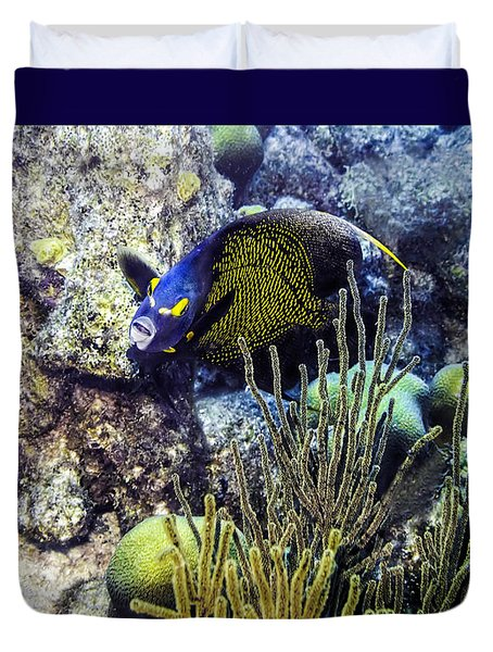 French Angelfish Duvet Cover