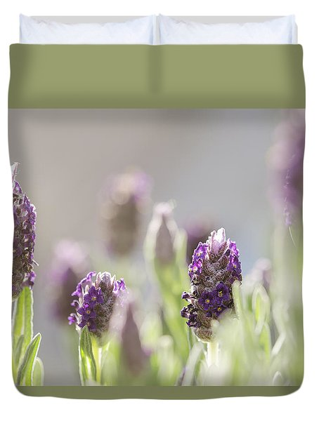 French Lavendar Buds Duvet Cover