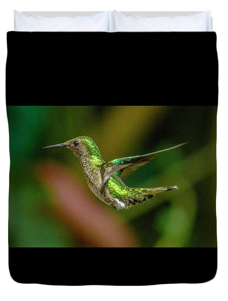 Frequent Flyer 2, Mindo Cloud Forest, Ecuador Duvet Cover