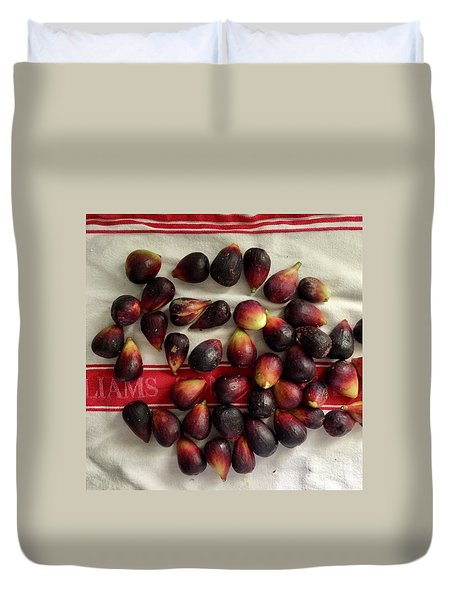 Fresh Figs Duvet Cover by Kim Nelson