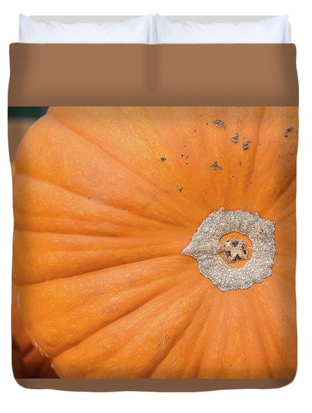 Fresh Organic Orange Giant Pumking Harvesting From Farm At Farme Duvet Cover
