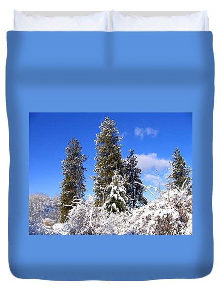 Fresh Winter Solitude Duvet Cover by Will Borden