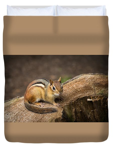 Friendly Chipmunk Duvet Cover by Paul Miller