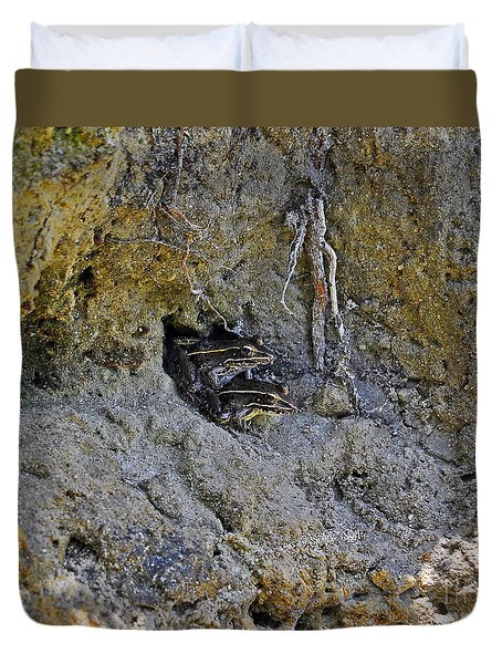 Duvet Cover featuring the photograph Friendly Frogs by Al Powell Photography USA