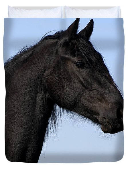 Friesian Stallion Duvet Cover