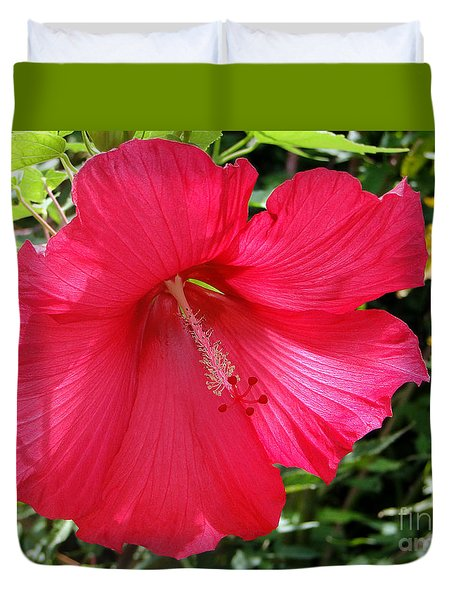 Frilly Red Hibiscus Duvet Cover