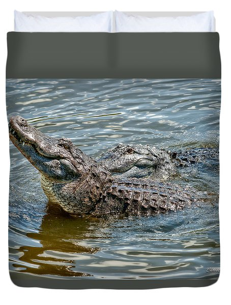 Duvet Cover featuring the photograph Frisky In Florida by Christopher Holmes