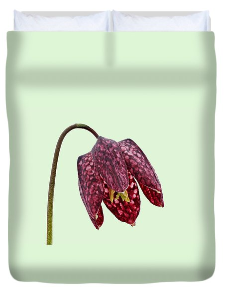 Fritillaria Meleagris Green Background Duvet Cover