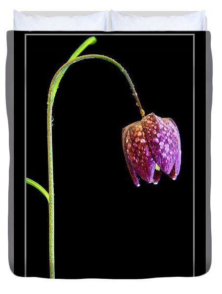 Fritillaria Meleagris, Snakes Head Fritillary Duvet Cover