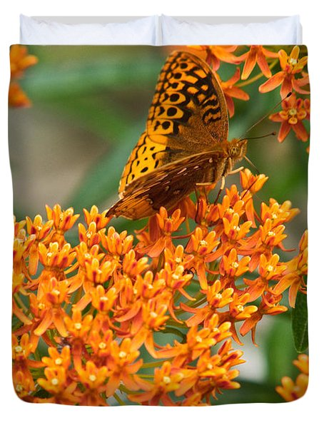 Frittalary Milkweed And Nectar Duvet Cover
