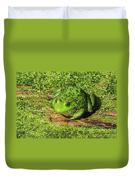 Frog And Duck Weed Duvet Cover by Edward Peterson