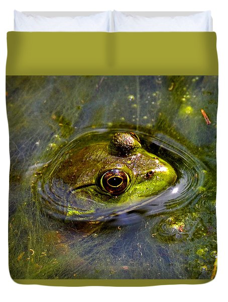 Frog In A Stream 003 Duvet Cover by George Bostian