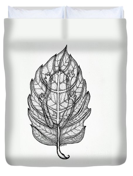 Frog On A Leaf Duvet Cover by Nick Gustafson
