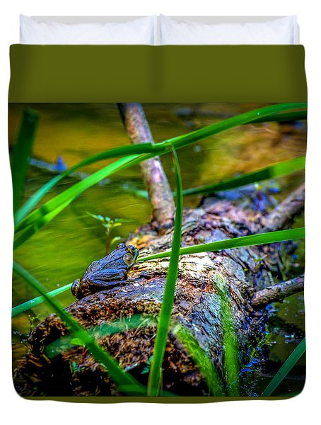 Frog On A Log 1 Duvet Cover