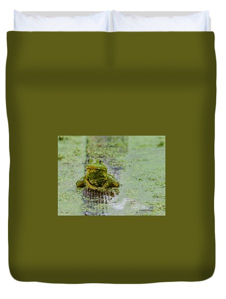 Frog On A Plank Duvet Cover by Edward Peterson