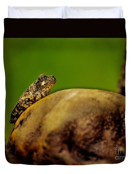 Frog Waits Duvet Cover