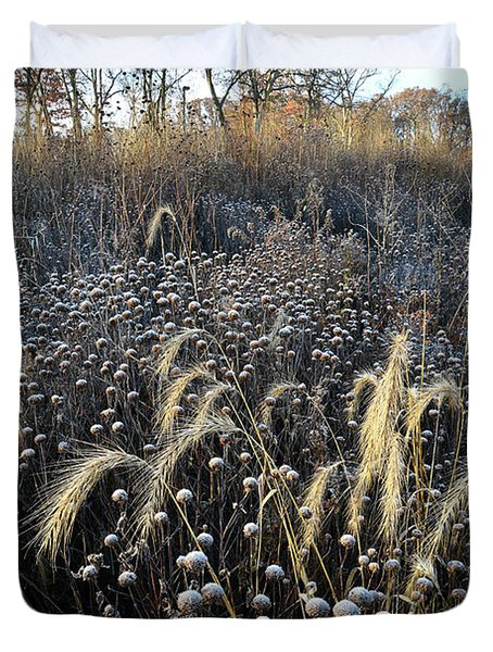Frosted Foxtail Grasses In Glacial Park Duvet Cover