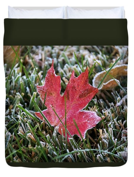 Frosted Maple Leaf  Duvet Cover by Yumi Johnson