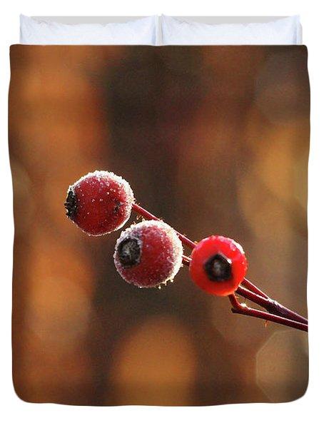 Frosted Rose Hips Duvet Cover