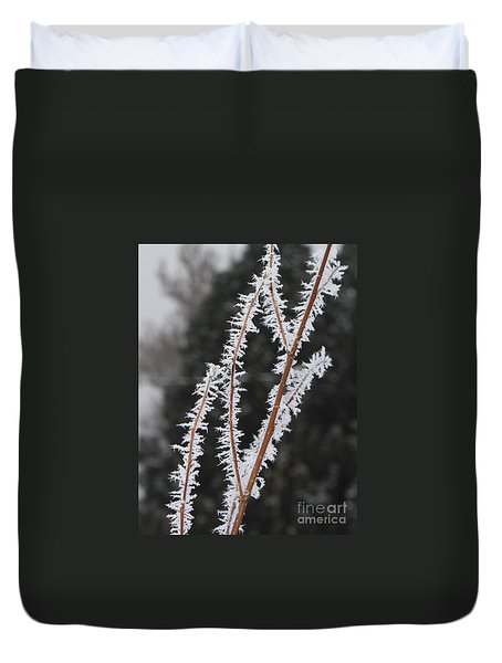 Frosty Branches Duvet Cover by Carol Groenen