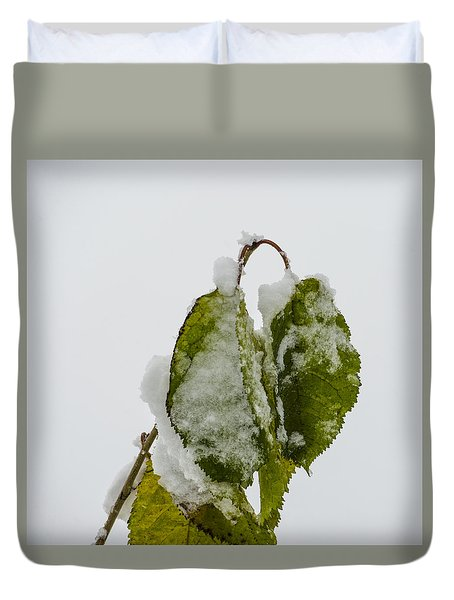 Duvet Cover featuring the photograph Frosty Green Leaves by Deborah Smolinske