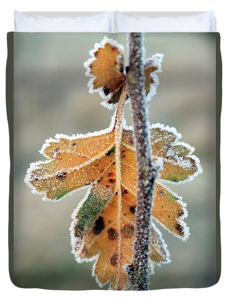 Frosty Leaf Duvet Cover