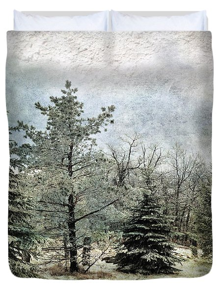 Frosty Duvet Cover by Lois Bryan