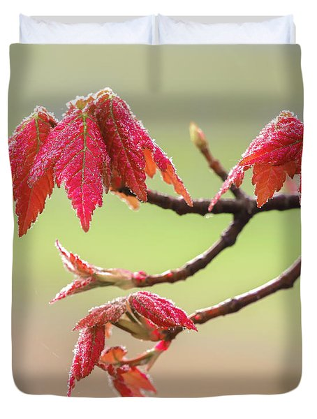 Frosty Maple Leaves Duvet Cover