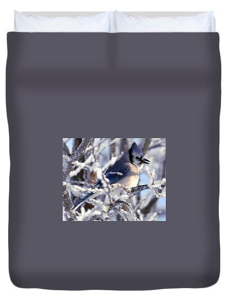 Frosty Morning Blue Jay Duvet Cover
