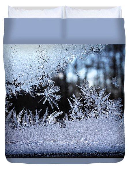 Frosty Morning Window Duvet Cover by Liz Allyn