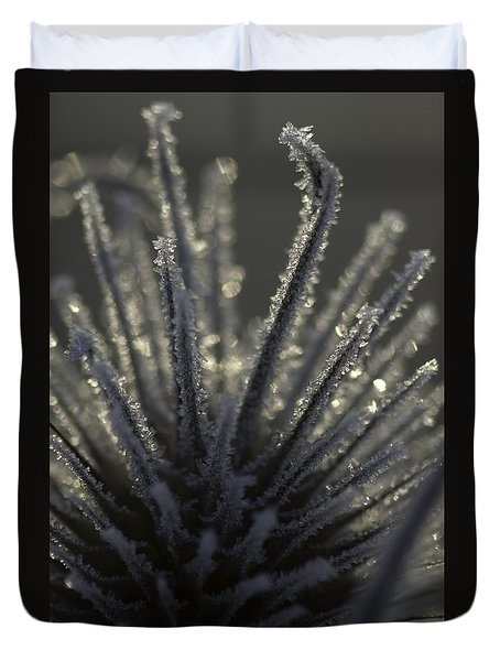 Frosty Teasel Duvet Cover