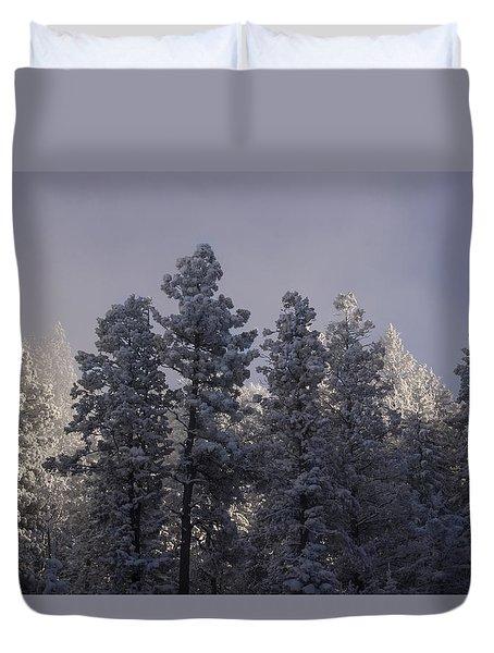 Duvet Cover featuring the photograph Frozen by Ellen Heaverlo