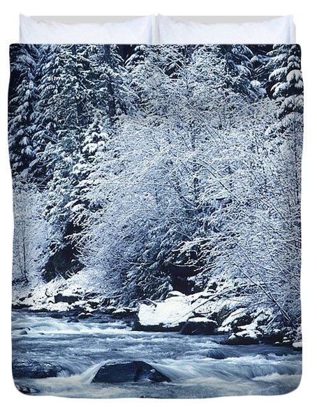 Frozen Salt Creek Duvet Cover by Greg Vaughn - Printscapes